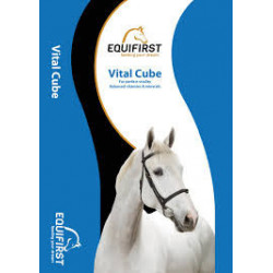 Vital Cube Equifirst