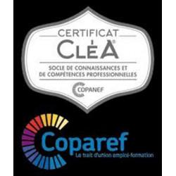 CléA - Certification des compétences socles