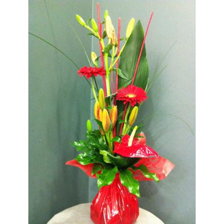 Bouquet linéaire poche d'eau rouge