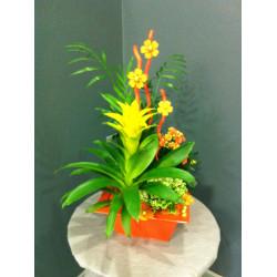 Composition plantes dans zinc orange