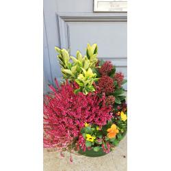 Coupe de plantes extérieure