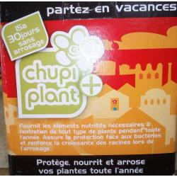 Chupi plant +