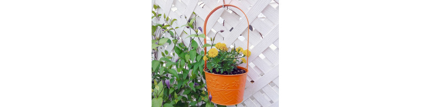 Bricolage Jardinage